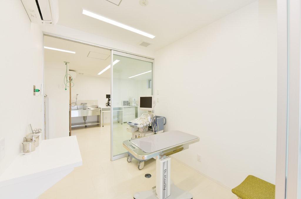 【明石本町動物病院診察室】クリーンな診察室。超音波検査も。
