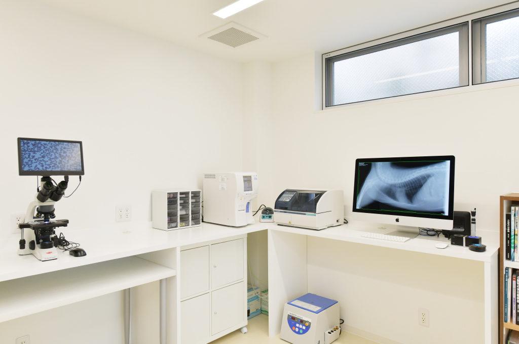 【明石本町動物病院処置・検査室】血球計算から生化学検査、顕微鏡検査まで。
